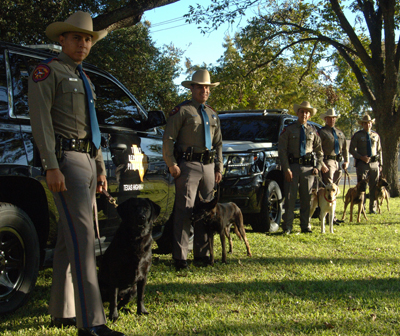 DPS canine teams